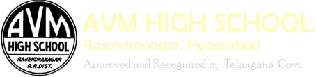 New Website Launched | AVM High School